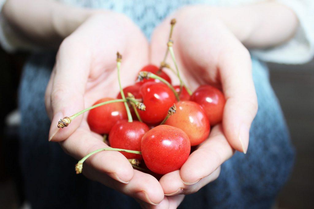 and-cherries-1532124_1280